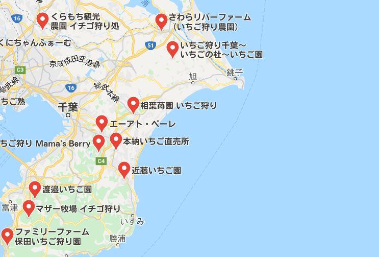 いちご狩り千葉県で安い場所
