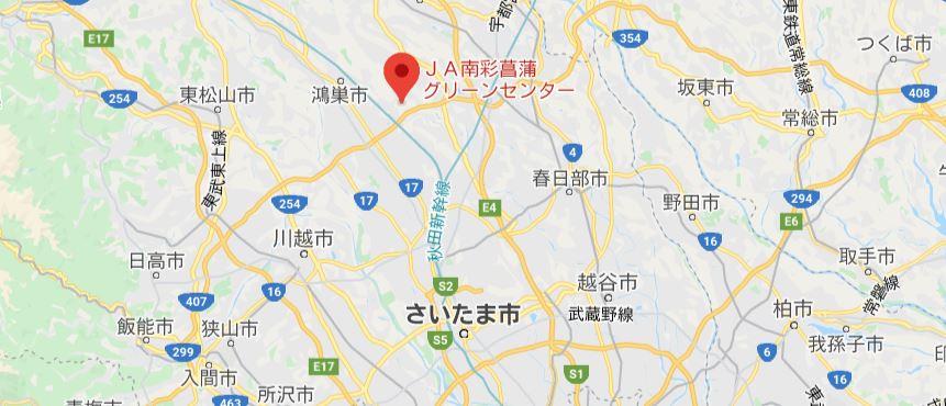 いちご狩り埼玉1