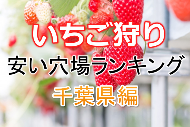 いちご狩り(千葉県)で安い穴場2020!無制限食べ放題も!