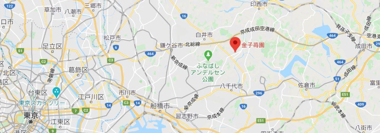 千葉県いちご狩り3