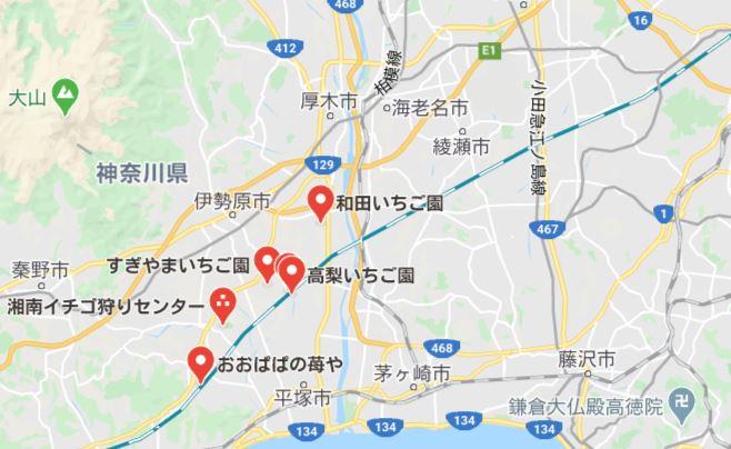 神奈川県のいちご狩りが安いスポット