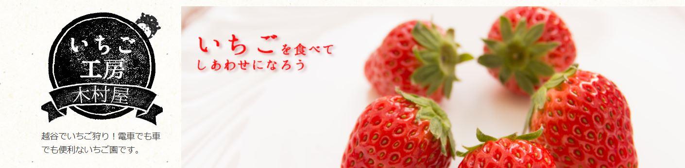 いちご狩り埼玉3