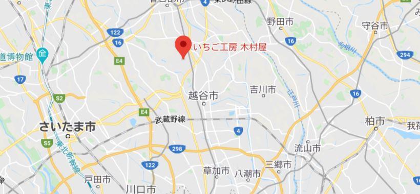 埼玉県いちご狩り5