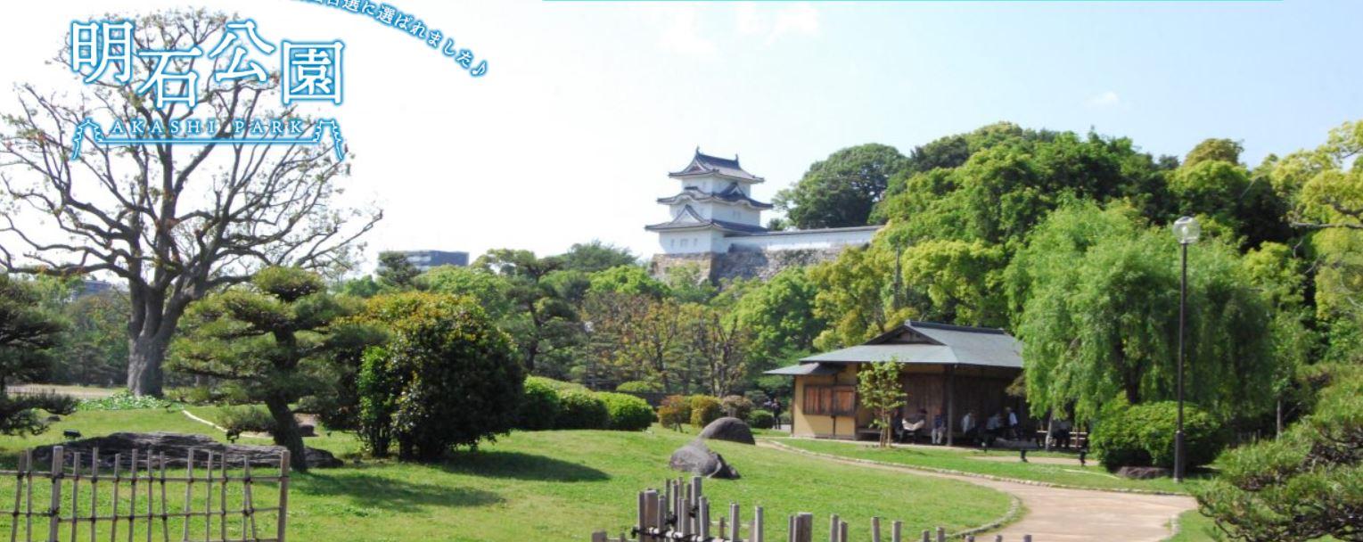 ペルセウス流星群を兵庫県で見る