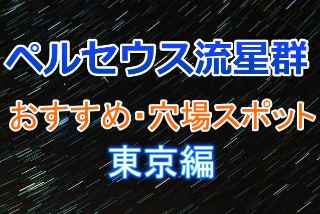 ペルセウス流星群東京